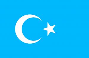 Flag Uyghur uygur bayragi