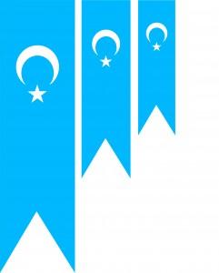 Uyghur-Flags