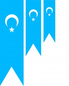 Uyghur-Flags