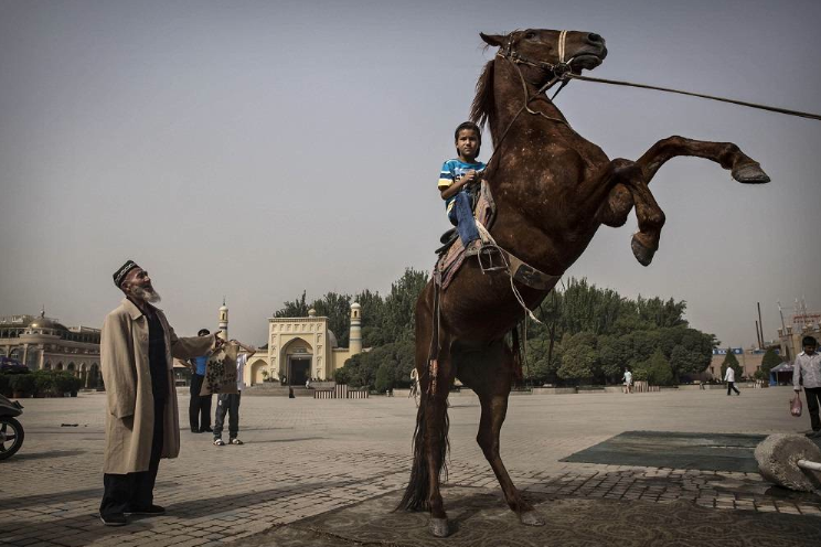Chinese Autonomous Province May Seek to Limit Uighur Births