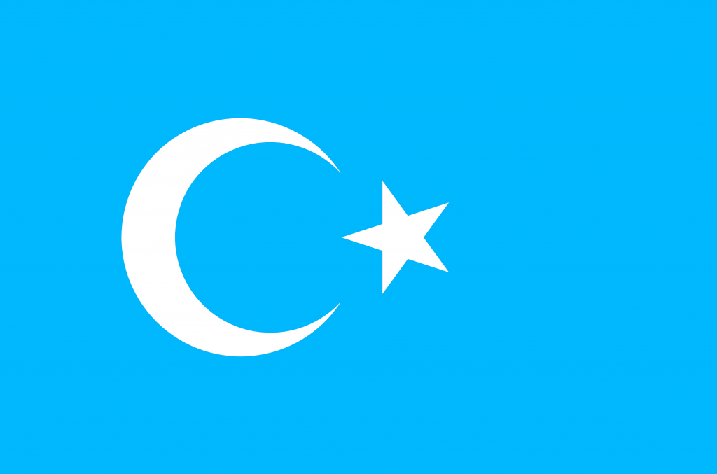 The official flag of the Uighurs