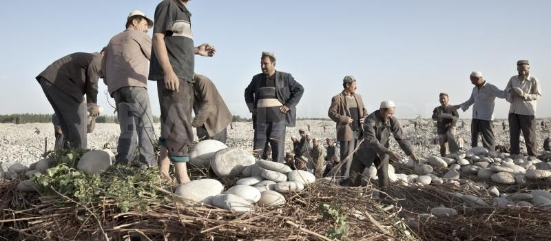 Authorities 'Ensure Stability' Through Forced Labor For Uyghurs in Xinjiang Township