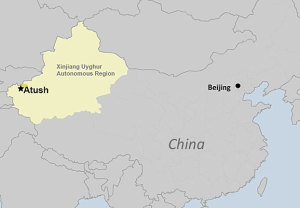Uyghur Businessman Dies Under Police Questioning in Xinjiang 2017
